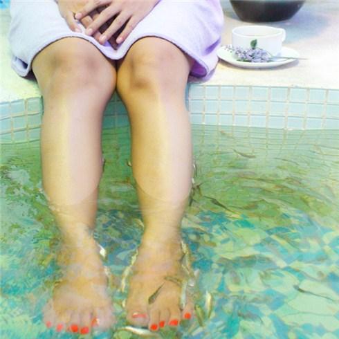 Massage cá