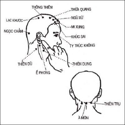 Huyệt đạo vùng đầu